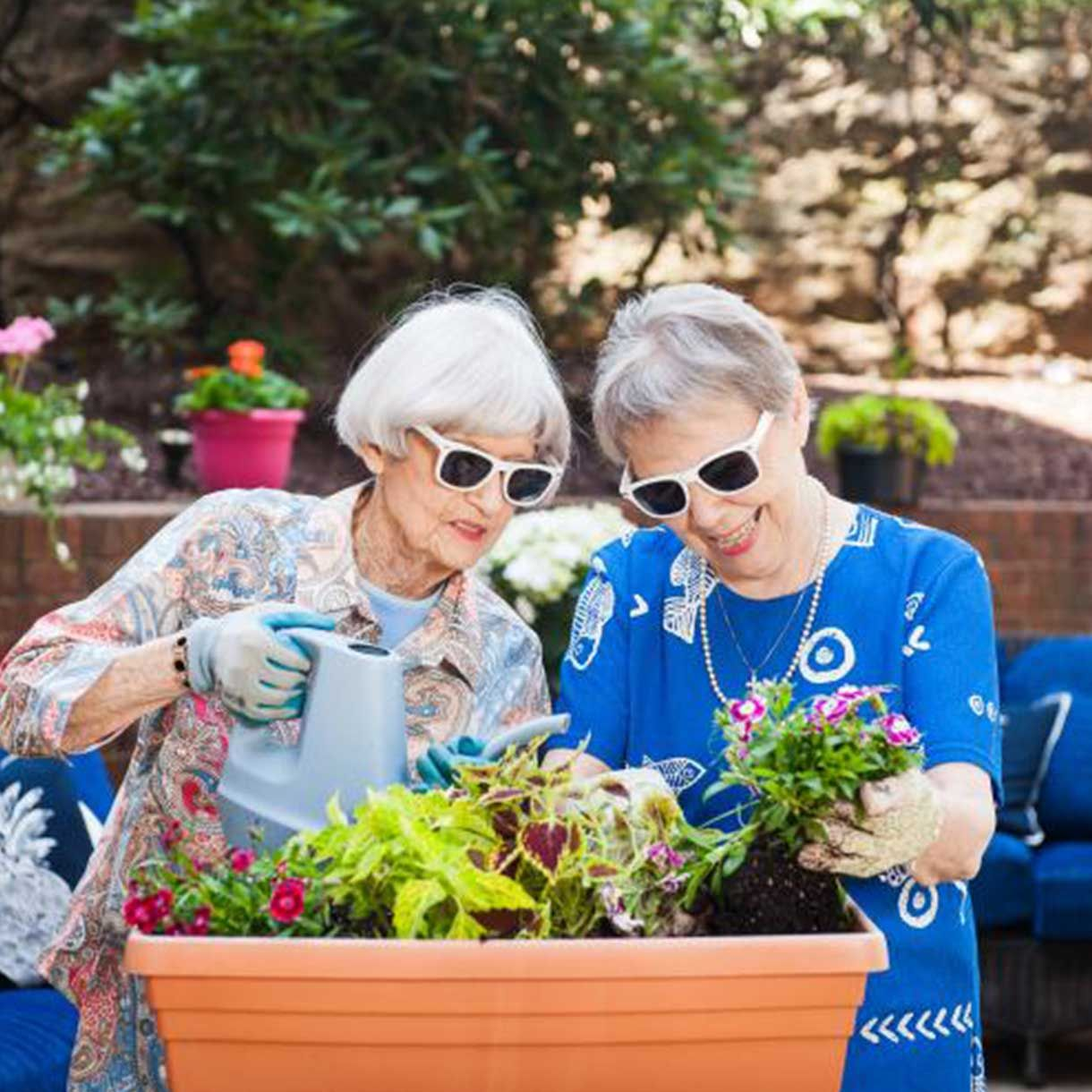 Senior Living Advisors in Austin know how to find the place for you and your loved ones.